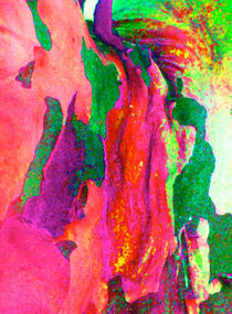 Summer Eucalypt Abstract 15 by Margaret Saheed