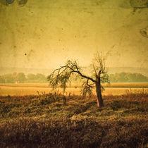 Herbstidylle by Mandy Tabatt