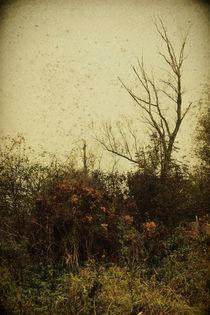 Melancholie by Mandy Tabatt