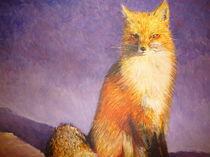 arctic fox by karumen
