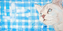 Cats Moments - blue von Annett Tropschug