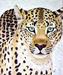 Der Leopard von Annett Tropschug