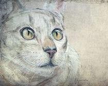 Cats Moments 3 - weniger farbintensiv by Annett Tropschug