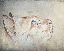 Cats Moments 1 - weniger farbintensiv by Annett Tropschug