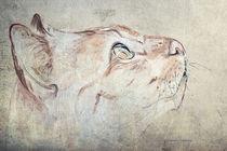 Cat Moments 1 - weniger farbintensiv by Annett Tropschug