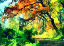 Autumn in forest von Odon Czintos