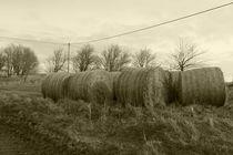 Straw Bales by alina8