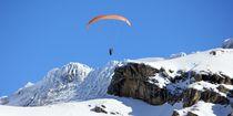 Gletscherflug by Bettina Schnittert