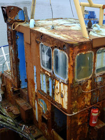 Rusty Old Lady von Mary Bowles