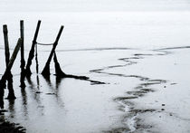 Low Tide by Mary Bowles