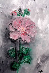 Shadowed-petals