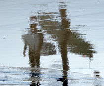Surfers, reflected.  by Debbie  White