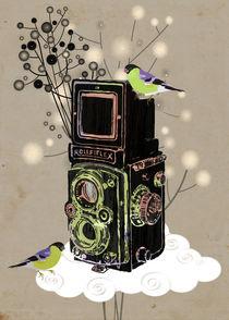 Vintage Camera Rolleiflex von Elisandra Sevenstar