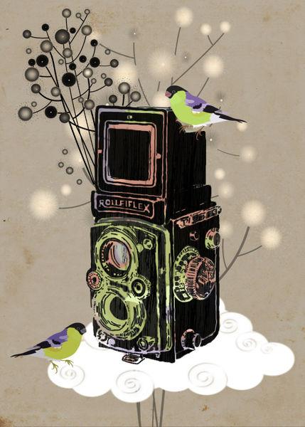Vintage-camera-rolleiflex