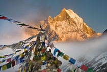 Prayer flags at sacred Fish Tail Mountain, Nepal by Tom Dempsey