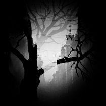 The Shadows of Reflection von Petri Aho