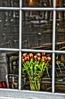 Tulips window by Marco Moscadelli