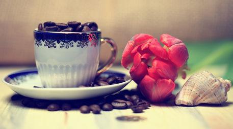 Tulpe-kaffeebohnen-cappuccinotasse