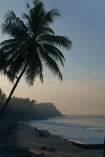 Palm Trees and Varkala Beach by serenityphotography