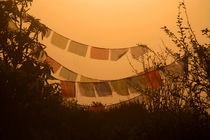 Prayer Flags and Mist Poon Hill by serenityphotography