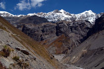 Scenery near Thorung Phedi by serenityphotography
