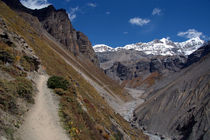 The Path to Thorung Phedi by serenityphotography