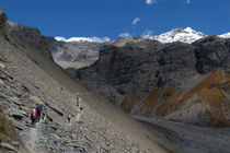 The-path-to-thorung-phedi