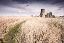 St Benets Abbey, Norfolk von Stephen Mole