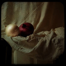 Two onions by Sonya Percival