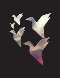 Sunset-birds