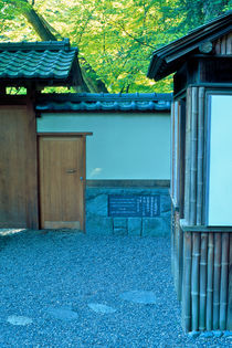 The Side Door, Nitobe 678 by Patrick O'Leary