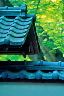 Roof Tiles Nitobe 679 by Patrick O'Leary