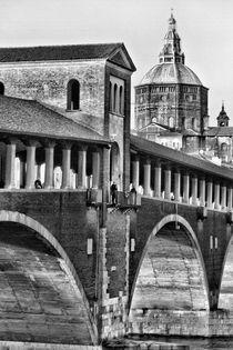 Pavia - Ponte Coperto e Duomo by Pier Giorgio  Mariani