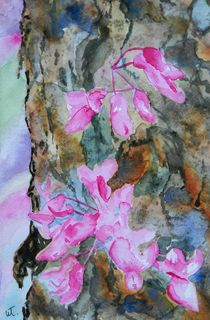 Redbud Texture Painting von Warren Thompson
