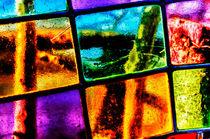 20120305-20120305-glencoe-002