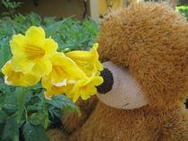 Blumennase von Olga Sander