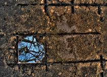 Heart Frame von Zvonimir Drolc