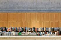 Kimbell Art Museum  by Luis  Gallardo