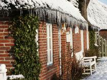 Eisig und doch kuschelig - Icy, yet cuddly von Patti Kafurke