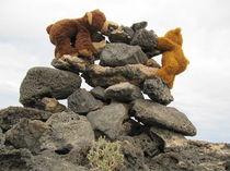 Gipfel-Treffen ist nah! von Olga Sander