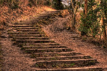 the steps by deanmessengerphotography