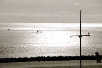 Northern Cross by bibi-photo-hunter