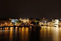 Night Life von bibi-photo-hunter