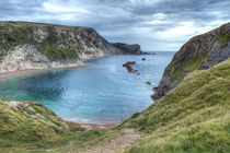 Man O War Bay by Alice Gosling