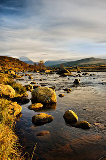 The Black Water River by Jacqi Elmslie
