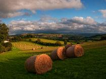 Dsc-10059-painscastle-panorama