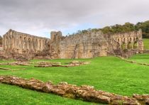 Rievaulx Abbey by Sarah Couzens
