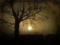 Halloween Sunset von Sarah Couzens