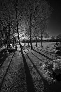 Llangorse Lake winter picnic von Nigel Forster