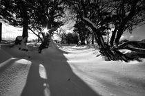Dsc-0050b-llanfrynach-winter-scene-bw-version